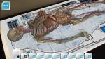 Anatomy 4D